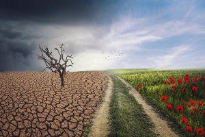 Ipnosi e cambiamento positivo
