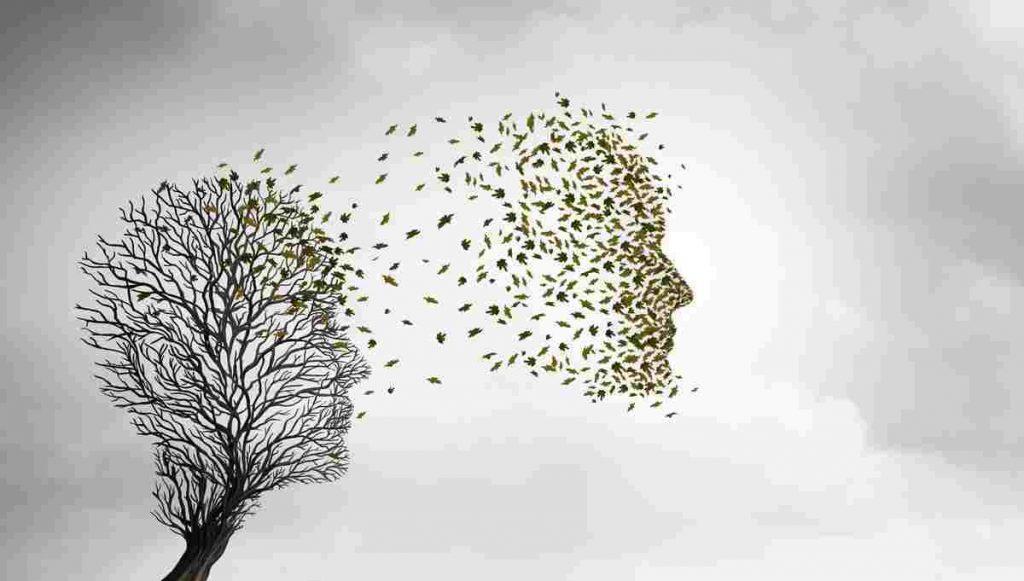 Teoria reincarnazione